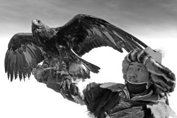 Eagle_Hunter_7a